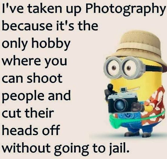 30 Minions Humor Quotes  Quotes and Humor
