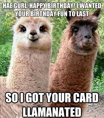 Top 25 Funny Birthday Quotes and Sayings | Quotes and Humor