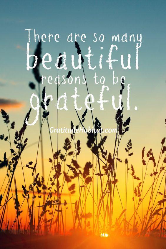 30 Best Gratitude Quotes #Gratitude #Quotes