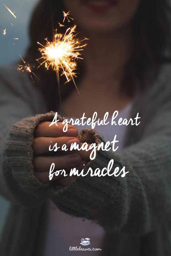 Best 25 30 Inch Vanity Ideas On Pinterest: 30 Best Gratitude Quotes