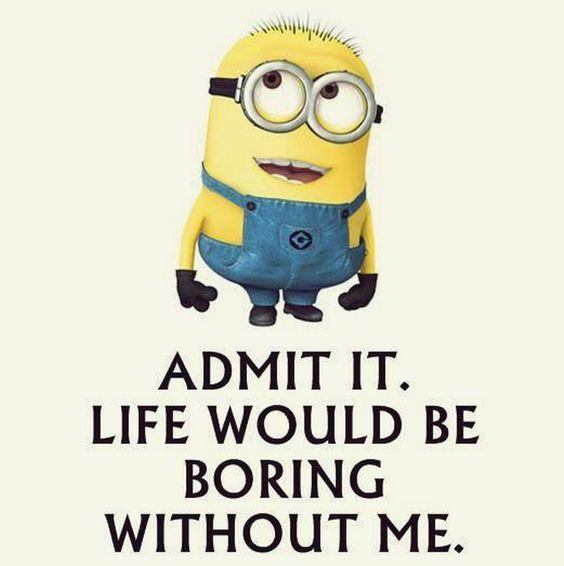 30 Funny Minion Quotes – Quotes and Humor