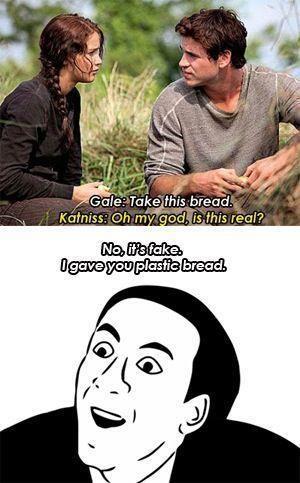 Best 25 Hunger Games Memes 19 Hunger games Funny Memes best 25 hunger games memes quotes and humor,Games Funny Memes