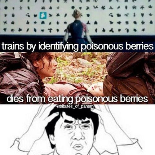 Best 25 Hunger Games Memes 23 Hunger games Funny Memes best 25 hunger games memes quotes and humor,Games Funny Memes