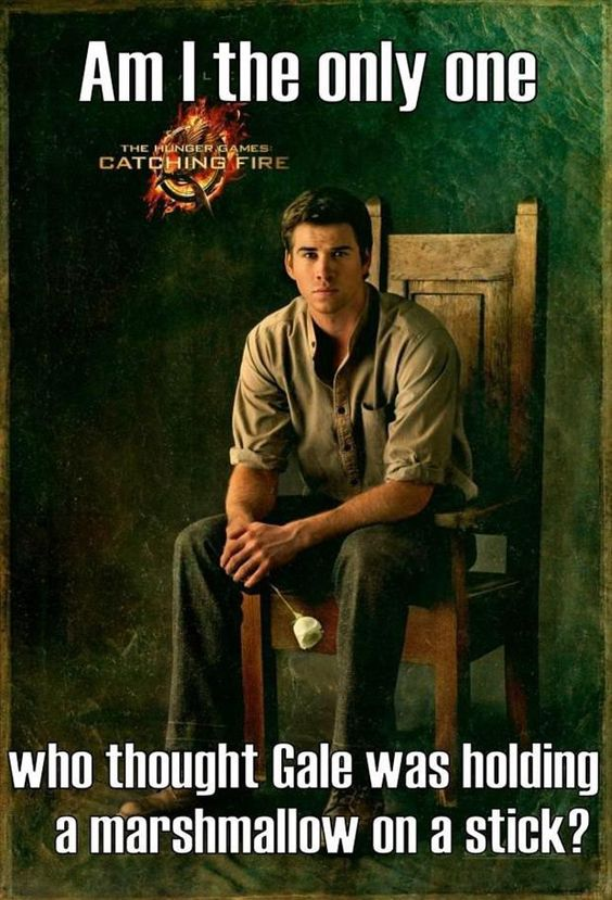 Hunger Quotes Magnificent Best 25 Hunger Games Memes  Quotes And Humor
