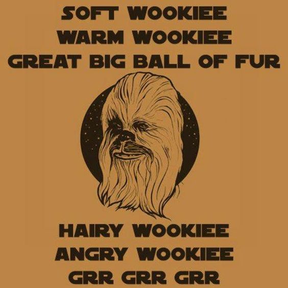 May The Fourth Be With You Wookie: Top 30 Funny Geek Humor Quotes