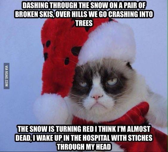 27 Grumpy Cat Funny Memes #Grumpy cat #Grumpy cat memes