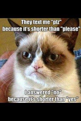 27 Grumpy Cat Funny Memes 23 #Grumpy cat