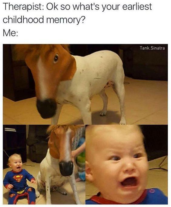 Top 30 Humorous Memes