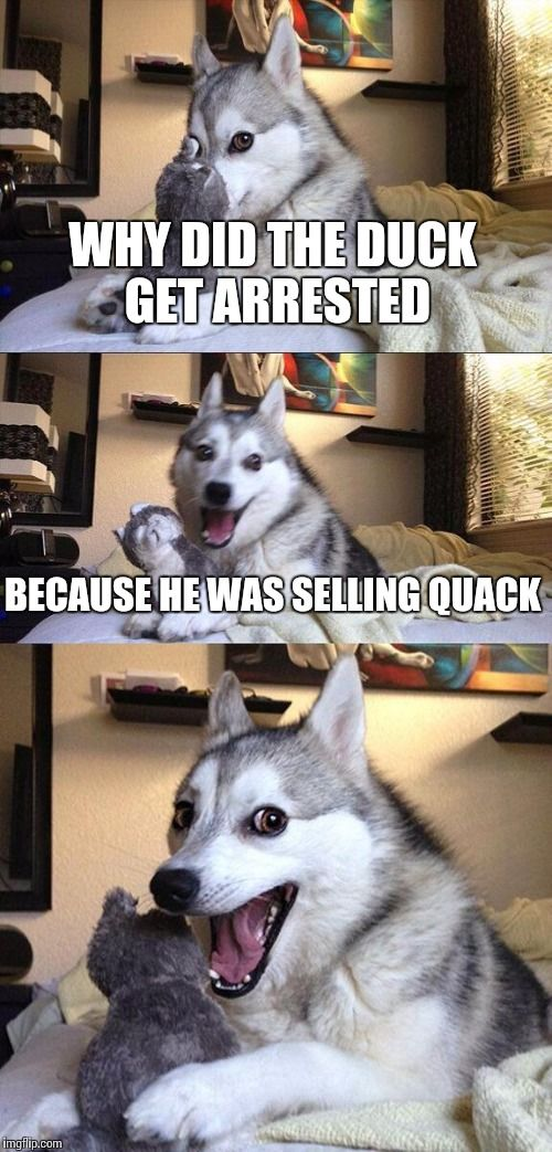 Best 32 Silly Jokes #Silly #Jokes