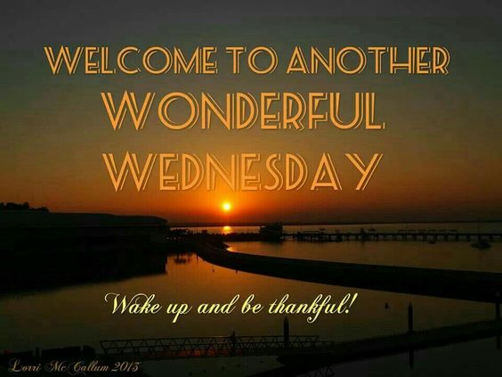 28 Wednesday Quotes Quotes And Humor