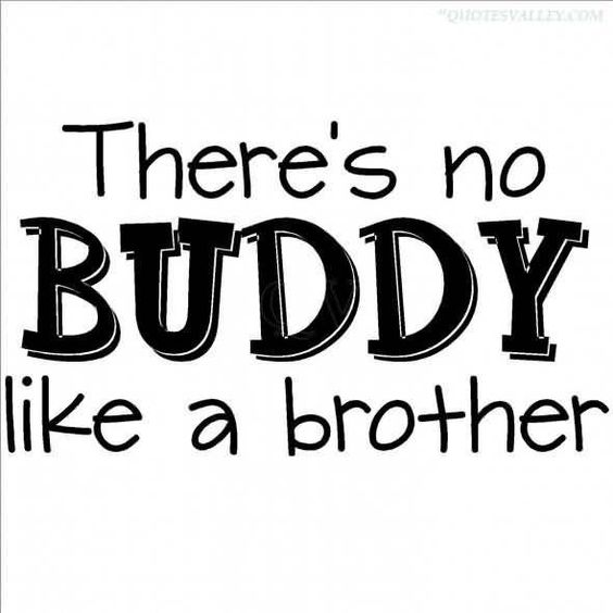 Top 27 Funny Sibling Quotes Quotes And Humor