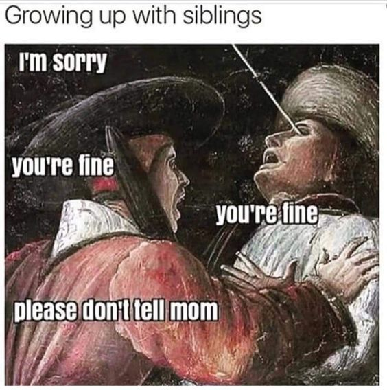 Top  Funny Sibling Quotes