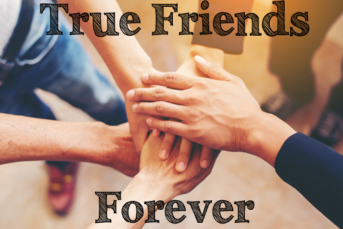 Best Friend Quotes | True Friendship Starts here