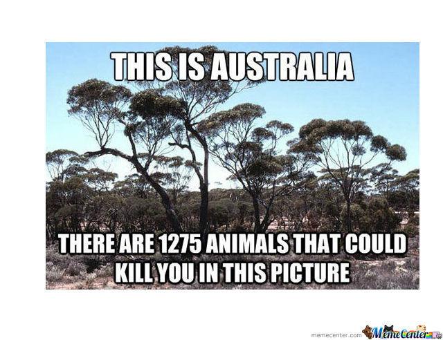 Top 24 Australian Memes
