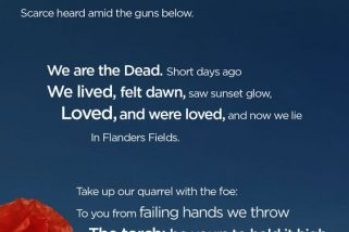 Top 20 Remembrance Day Quotes