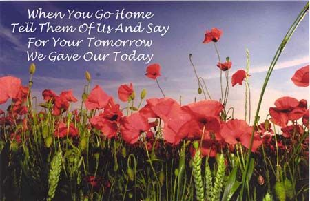 Top 20 Remembrance Day Quotes Quotes And Humor