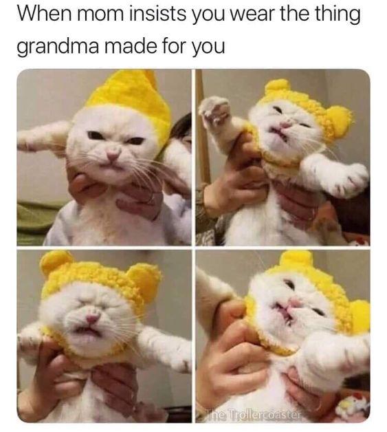 Top 20 Lol So True Memes