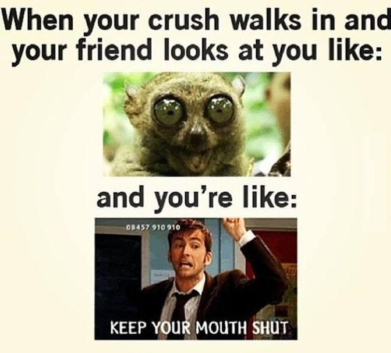 Top 30 Funny Quotes for Teens Crushes
