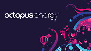 Octopus Energy Reviews